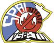 Sdružení požárního a bezpečnostního inženýrstvíí
